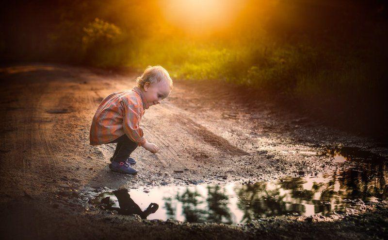child, children, portrait, boy, nature, grass, meadow, flowers, sun Puddlephoto preview