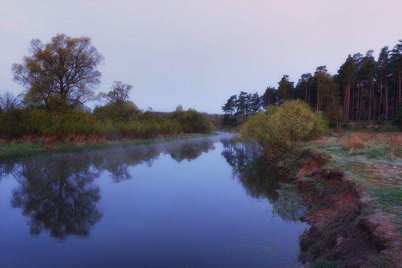 Река, Республика Беларусь, Сосны, Утро Предрассветное...photo preview
