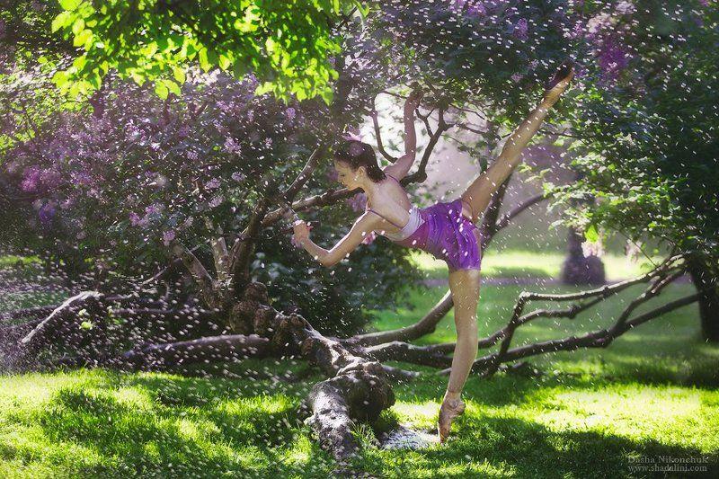 балет, балерина, танец, дождь in the rainphoto preview
