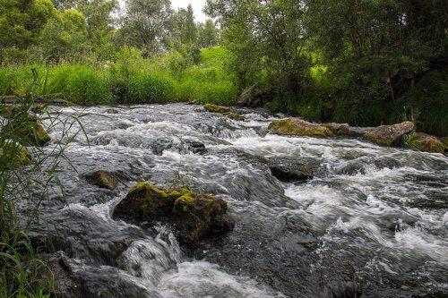 люди способны фото реки сирена прием называется съемка