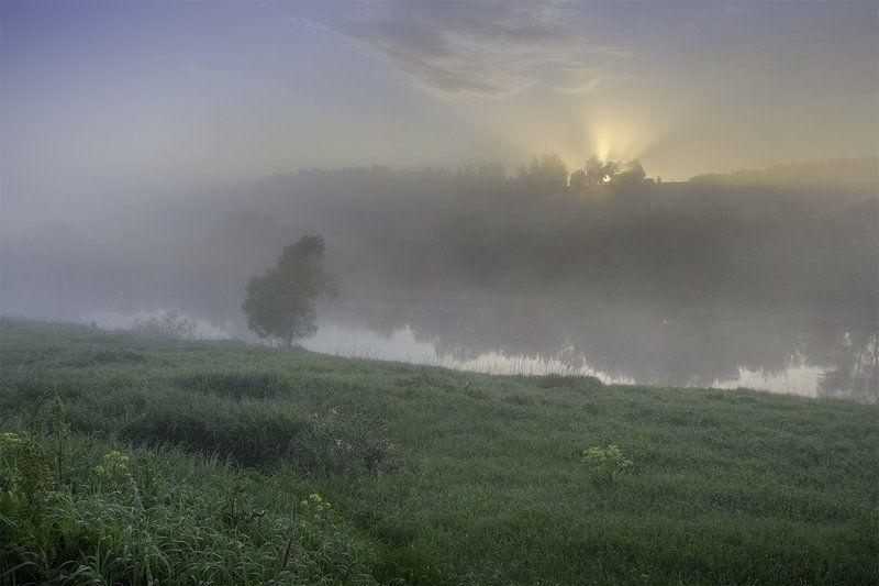 D3100, Nikon, Ока, Пейзаж, Природа, Рассвет, Река, Россия, Тульская область, Туман Пробуждениеphoto preview
