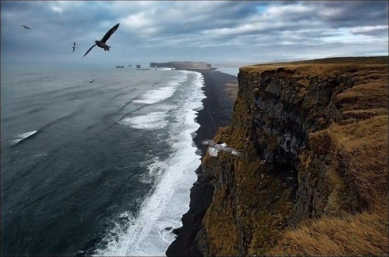 Исландия мыс Вик Vik чайки океан волны Исландия. Чайки над мысом Вик.photo preview