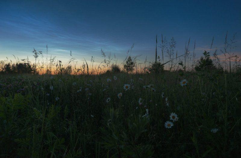 белые ночи, лето, серебристые облака, спасс косица, туман, подмосковье, верея Путешествие в ночном тумане IIphoto preview