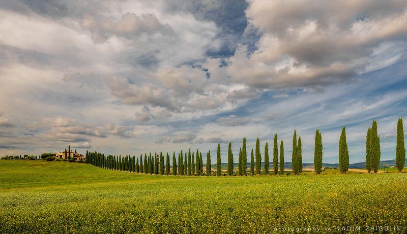 Italy, Landscape, Toscana, Val d\' Orcia Дорога Гладиаторовphoto preview