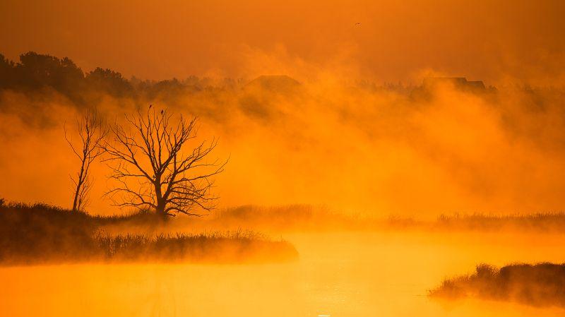 Рассвет, Река, Туман Оранжевое настроениеphoto preview
