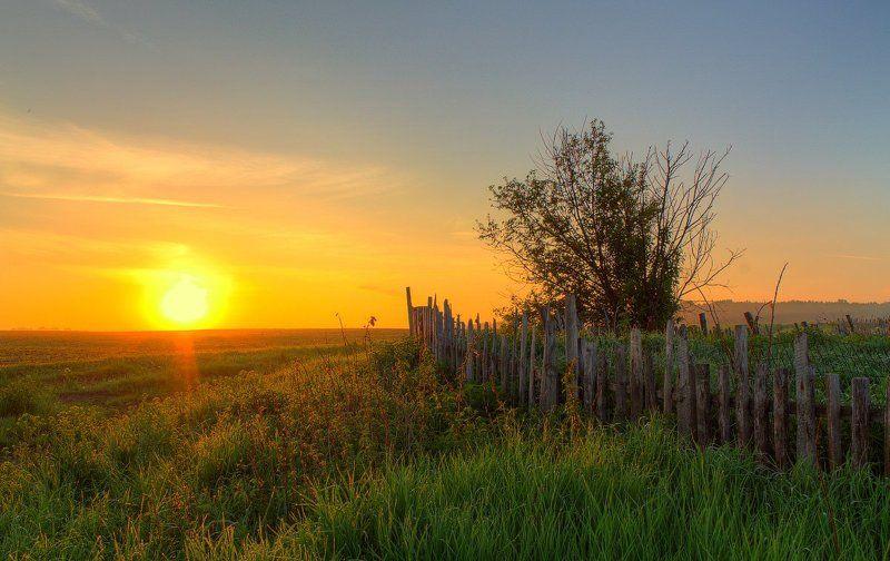 забор, лето, небо, облака, пейзаж, природа, рассвет, свет, солнце, трава Июньский рассветphoto preview