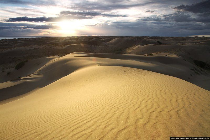 Монголия, путешествия, пустыня Пески Монгол-эллс. Монголияphoto preview