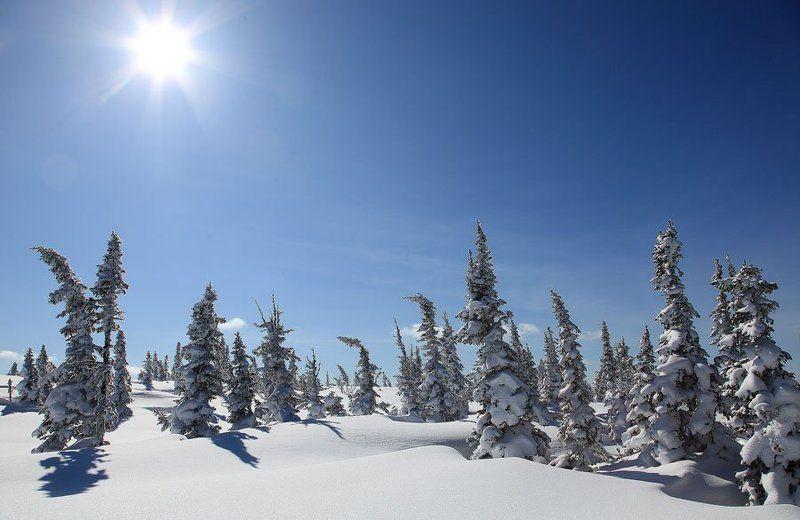 зима, шерегеш в лучах под солнцем снег лежитphoto preview