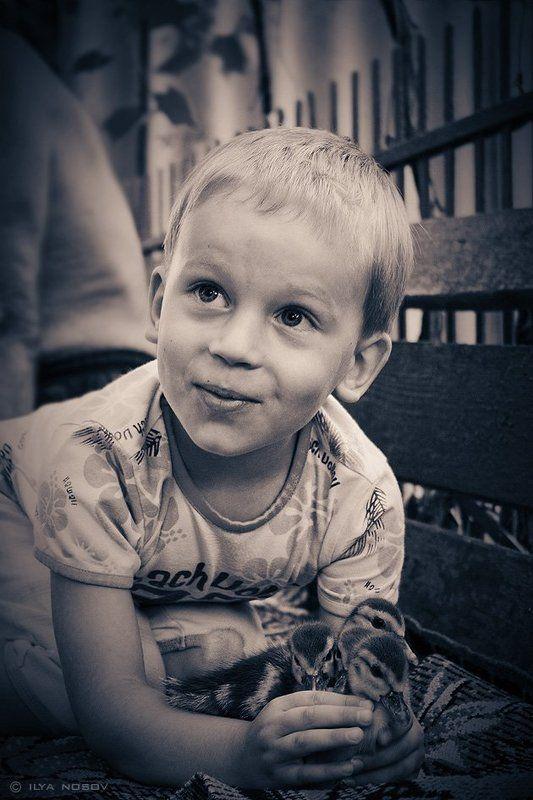 Мальчик с утятамиphoto preview