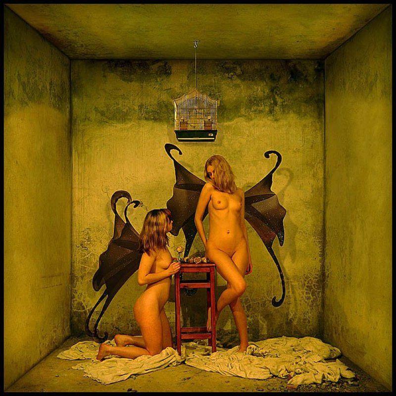 клетка, эротика, седнин, дверь, пирамида, соты, ангел, призма, звезда, подвал, девушки Клеткаphoto preview