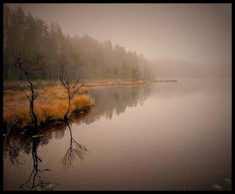 туман, озеро, осень, утро Осеннее утро на Лампиярвиphoto preview