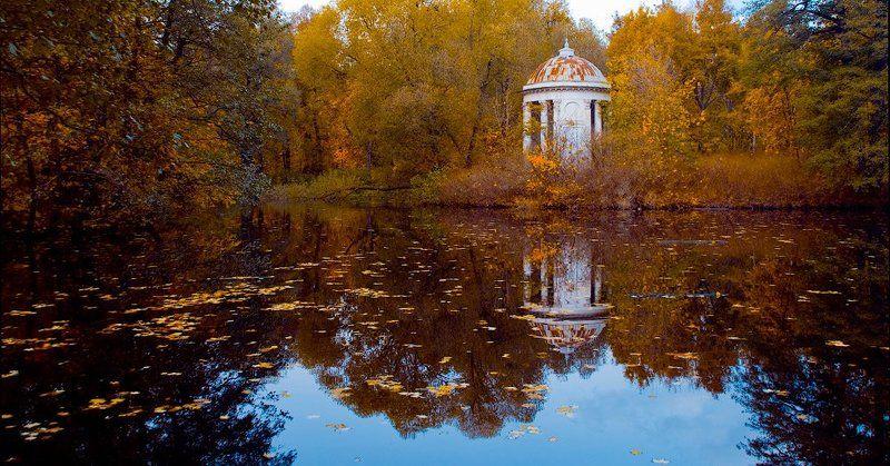 осень осеннее одиночествоphoto preview