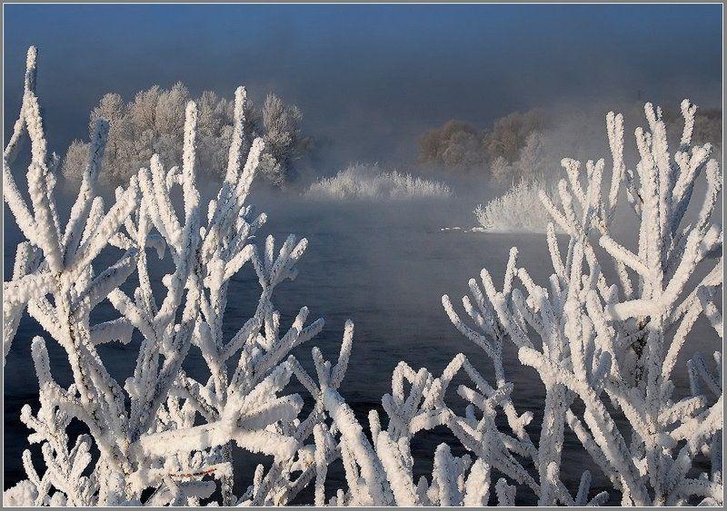 иртыш,зима,иней Коралловые островаphoto preview