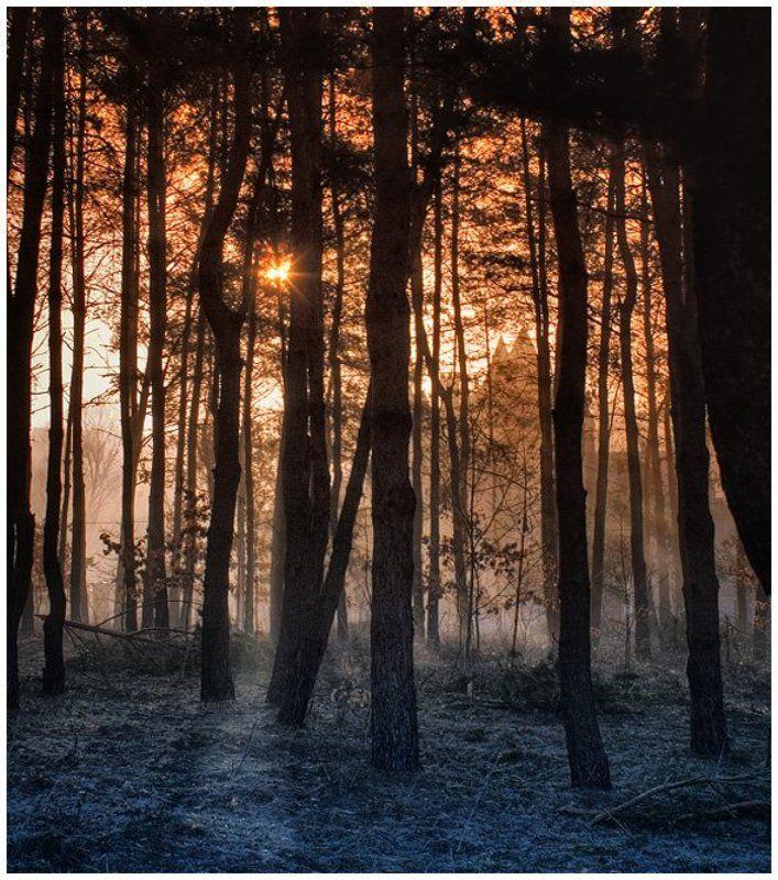 замок,рассвет,природа,заморозки,утро photo preview
