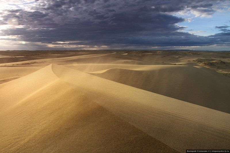 пустыня, пейзаж, путешествие, монголия Пески Монгол-элсphoto preview