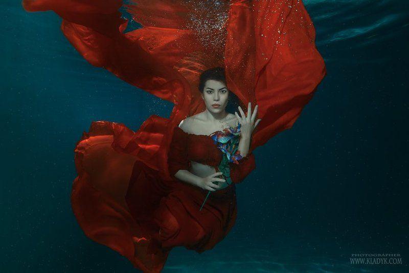 женщина, девушка, подводой,  ***photo preview