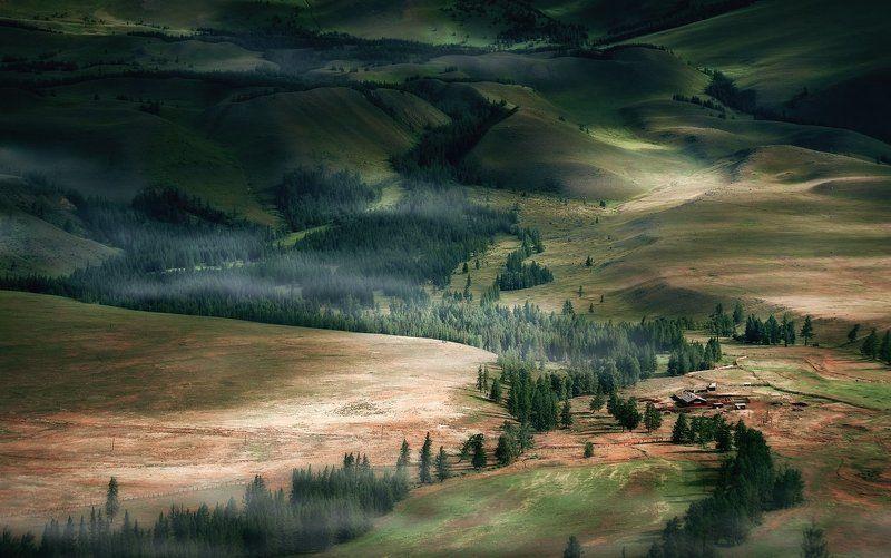 Altai mountains, Алтай, Горы, Курай, Лес, Лето, Свет, Степь, Ферма В отрогах Курайского хребтаphoto preview