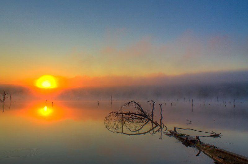 вода, лето, небо, рассвет, река, солнце, туман, утро Туман на рекеphoto preview