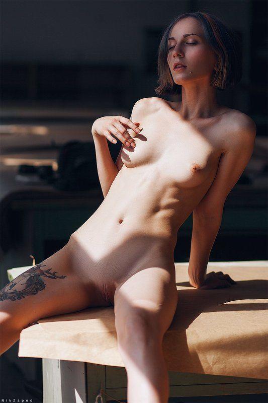 nude, модель, девушка, nikzapod Taxidermy #44photo preview