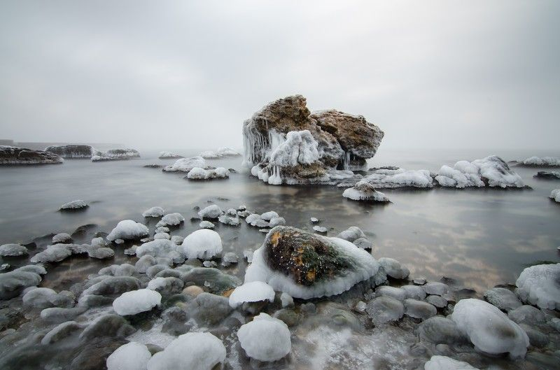odessa, одесса, черное море, море Южная пальмираphoto preview