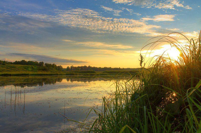 вечер, закат, лето, небо, облака, пейзаж, природа, река, солнце, трава Июльский закатphoto preview