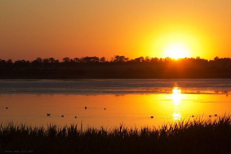 Лиман, озеро, водоем, закат, вечер, птицы, утки, чайки, контуры,  Заповедный закатphoto preview