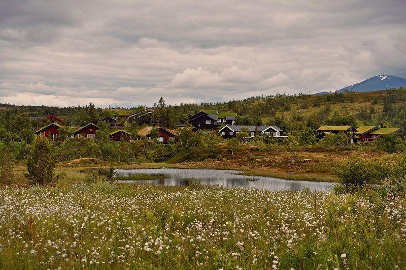 Норвежские домикиphoto preview