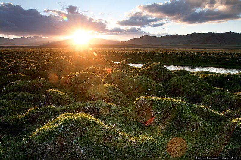 солнце, закат, Монголия,трава Окрестности перевала Буратын-Даба. Монголия.photo preview