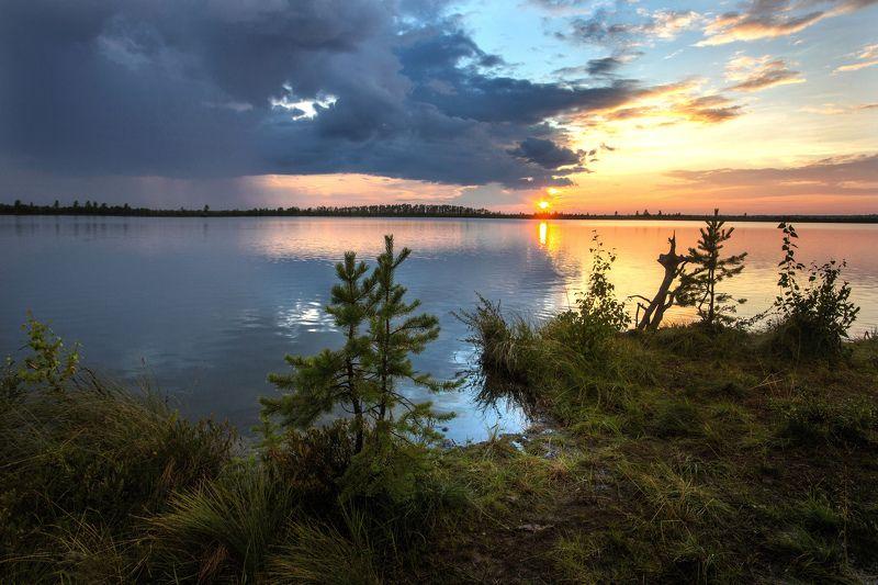 Закат, Озеро, Югра Вечер на озереphoto preview
