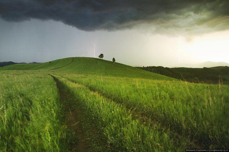 Алтай, гроза, буря, тучи, зелень Гроза на предгорьями Алтаяphoto preview