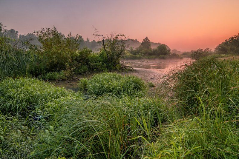 Лето, Утро Одно тихое буднее утроphoto preview