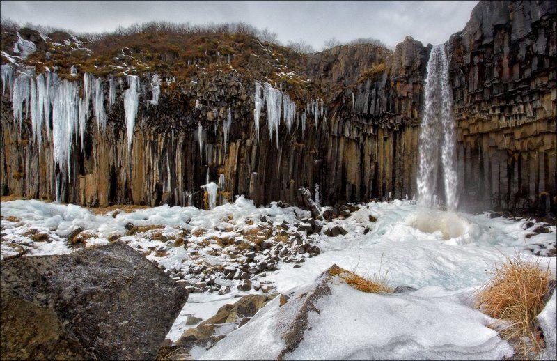 Исландия Iceland Svartifoss водопад зима снег лед базальт колонны Исландия. Черный водопад (Svartifoss).photo preview