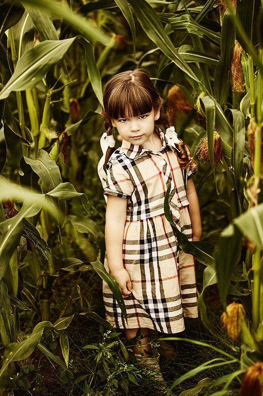 портрет,ребенок,кукуруза,лето ***photo preview