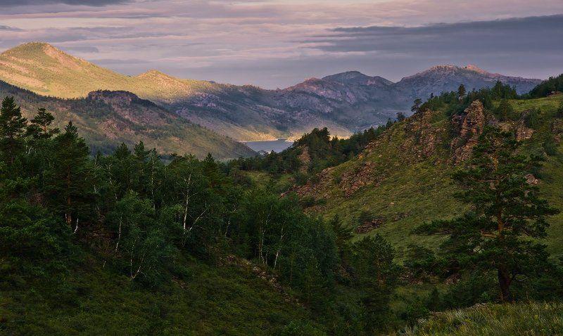 баянаул, горы, рассвет, сосны Первые лучиphoto preview