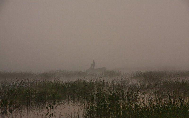 утро, вода, река, туман Утро туманное...photo preview