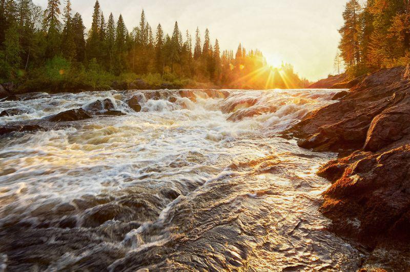 река,вода, лес, Карелия,Тумча,пейзаж На закатеphoto preview