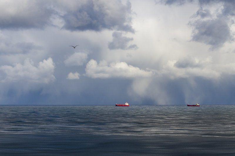 В Охотском мореphoto preview