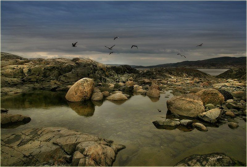 баренцево море, малая немецкая бухта, камни Семьphoto preview
