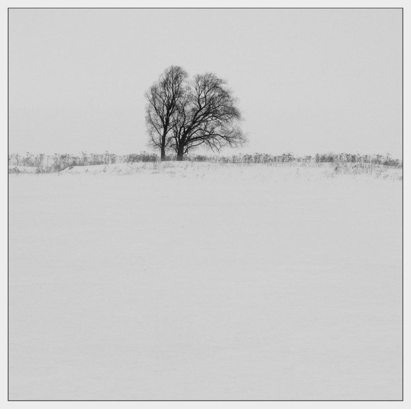 удмуртия,зима 2photo preview