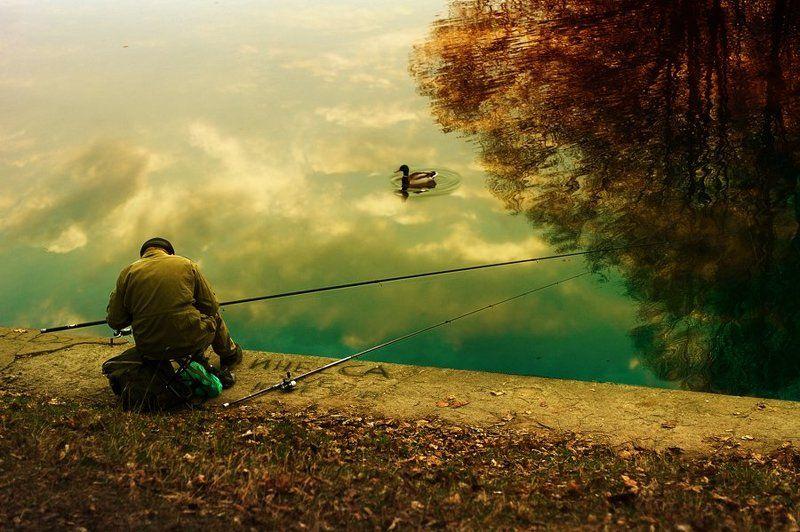 рыбак, утка, озеро, парк, лето, москва о рыбакеphoto preview