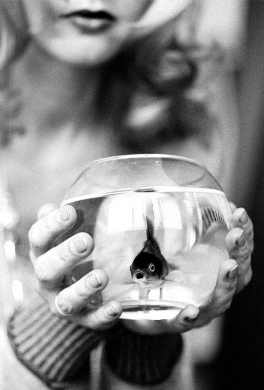 рыбка, аквариум, руки, губы Рыбкаphoto preview