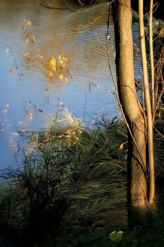 монокль, природа, пруд Поник камыш, но не беда.. Нарядна синяя вода... В листве последней солнца свет... Такой у осени сюжет...photo preview