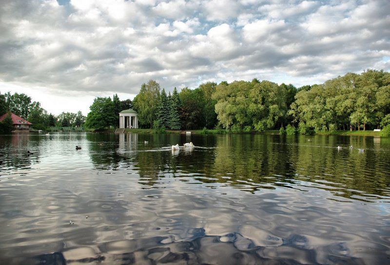 Лебединое озероphoto preview