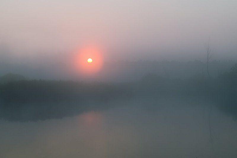 Утренний минимализмphoto preview