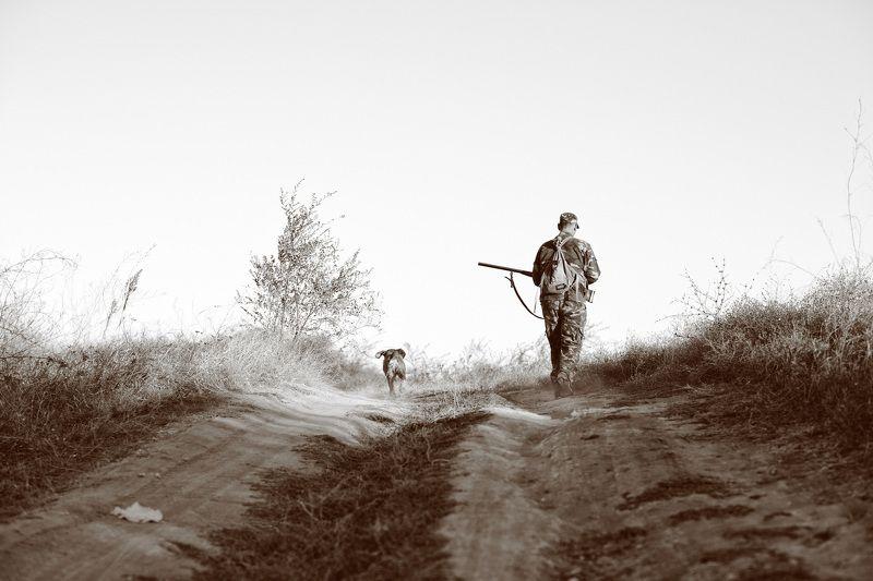 Дорога, Кусты, Охотник, Собака, Чб, Человек охотники..photo preview