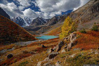 Осенние краски высокогорий.