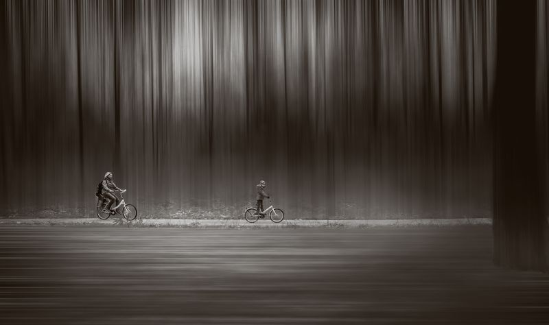 Bike, Bw, Child, Forest, Light, Mother, Road, Trees, Walking walking..photo preview