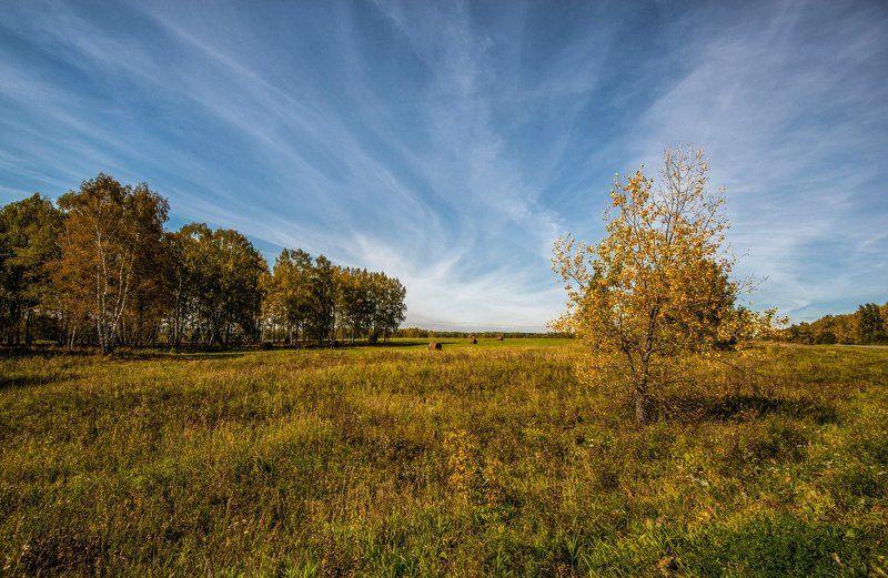 осень, небо небесная *путаница*photo preview