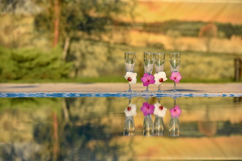 nature, glasses, reflection, water Wedding Glassesphoto preview