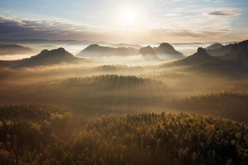 landscape, nature, light, fog, mist, sunrise, germany, saxon switzerland, trees, forest, mood, atmosphere Summer Morningphoto preview